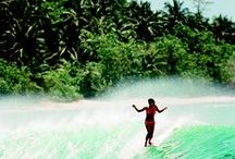 surf.travel.life. / money fill your pockets - adventures fill your soul