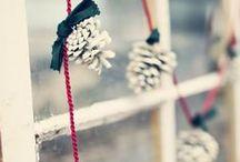 vánočně / christmas
