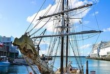 Sailing in NZ