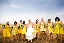 Wedding / by Nicole Hendrix