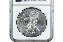2013 NCG Burnished Silver American Eagles