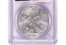 2013 PCGS Burnished Silver American Eagles