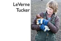 Storybook Art & Fibre / Come visit LeVerne Tucker on her studio farm.  #9 on the WAVE tour / by WAVE Artists