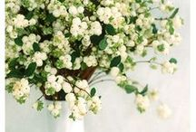 Pick a bouquet