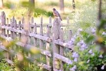 Fantastic Fences