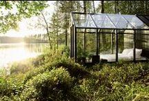 Houses. Gardens. Terraces. Vegetation