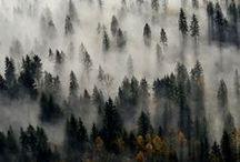 landscape / breathtaking landscapes nature