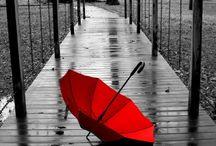 Lovely photos...
