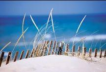 L'île de Ré / L'île de Ré est un paradis composé de dunes et de baies, cachant de nombreux trésors aux vertus cosmétiques extraordinaires.  Le Laboratoire Léa Nature les a mis au cœur de formules à l'efficacité prouvée grâce à la gamme ILE DE RÉ.