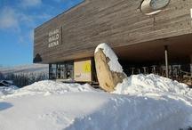 INNs Holz im Winter / INNs Holz Natur- & Vitalhotel**** Chaletdorf Böhmerwald
