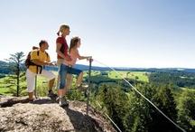 INNs Holz im Sommer / INNs Holz Natur- & Vitalhotel**** Chaletdorf Böhmerwald
