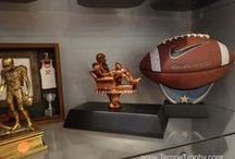 Fantasy Football Trophy / Some fun ideas of FFL trophies that we have done #FantasyFootball