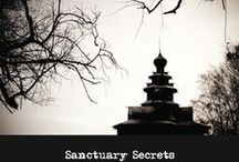 Sanctuary Secrets / After the tragic and mysterious murder in St. Spooks Church 25 years ago, the church was closed to the public. Much speculation still remains around the unsolved murder of the Mayor's first-wife, the young soap opera star, Carlee Jaks-Guillani. Why was she at the Church late that night after Choir practice? Even more intriguing, is the growing number of witnesses and complaints about haunting cries and lights in the abandoned Sanctuary over the years.