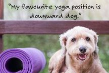 Pet Quotes / Pet Quotes that any dog or cat lover will love!