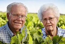 Sun-Maid Growers / A look at the growers who grow our Sun-Maid raisins.  / by Sun-Maid