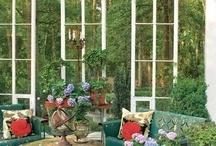 Garden/Sanctuary Plants and Pods / by Neva Fiumara