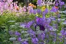 I need a garden... Now!