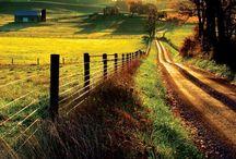 Farm,homestead,off the grid