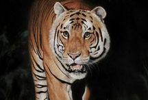 Animal Pastel Art | Learn How To Draw Animals / How To Draw Animals using Pastel Pencils. Learn Colin's Pastel Pencil techniques to create stunning paintings. Get Colin's FREE Kitten Art Lesson here: http://www.colinbradleyart.co.uk