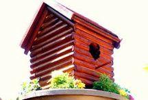 Bird houses/baths