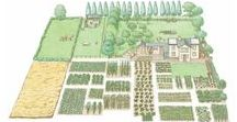 Homesteading / Homesteading | Gardening | Livestock | Chickens | Self-Reliance