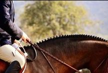 equestrianism / The skill or sport of horse riding. As an Olympic sport it is divided into three categories: showjumping, dressage, and three-day eventing (combining showjumping, dressage, and cross-country riding). / by Allie13604