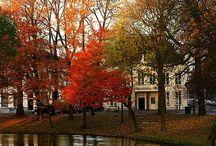 My favorite season - Autumn :)))