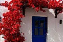 sacadas, portas e janelas / Por um mundo com mais flores na janela.