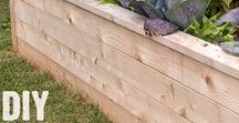 DIY - Garden / DIY projects, hints and tips for creating a beautiful and productive garden.
