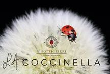 """La Coccinella- The Ladybug / Our inspiration for our ready-to-wear women's apparel line is """"la coccinella,"""" the Italian word for ladybug.   A ladybug's life is very short, but very active and energetic, and they continually regenerate and create new life.   A ladybug's message is powerful and clear: our lives are short, too, and so we should live life to the fullest, let go and enjoy each present moment here on earth."""