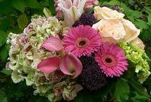 Tiffany Florist / Flowers around the shop.