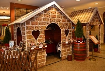 Feastive season 2012 / Our freshly prepared xmas goodies and our gingerbread house.