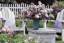Gardens / Garden photos, creative tips for gardens and inspiration.