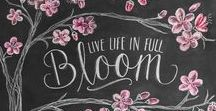 Wände gestalten mit Kreide  ★  Chalk board DIY Inspiration / Mit Kreide erstellst du immer wieder neue Kunst an der Wand. Hier kommen Inspirationen.