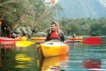 Milford Sound Cruise & Kayak