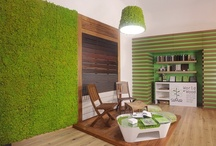 Samar Showroom