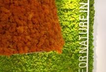 Verde Profilo @ Maison&Objet 2013