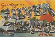 Historic Marion County / Learn more about the rich history of Ocala/Marion County in Florida!