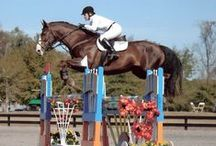 Florida Equestrian