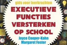 Pins in Dutch Language / Lesson and background material for educators