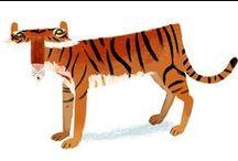 Animals / Big cats