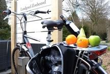 Fietsen / Heerlijk fietsen in de buurt en wat verder weg.