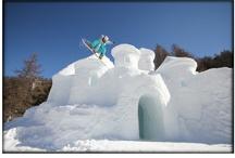 Sculptures sur neige et sur glace