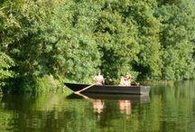 Les activités nature en Loire Layon / Envie d'évasion? Vous aimez la nature? Voici des idées d'activités et de sorties pour être au plus proche de la nature, en Loire Layon!