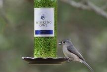 Recycler vos bouteilles de vin