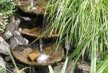Rainwater & Ponds
