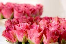 Les Fleurs / My floral business
