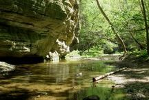 Starved Rock in the Spring & Summer / by Starved Rock State Park & Lodge