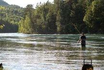 Lakseenka (flyfishing) / Bloggen om livet som tørrfrue!