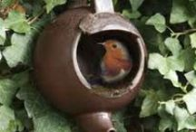 Wildlife Habitat Garden / Create a back yard habitat for birds and other wild life.